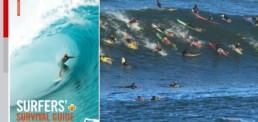 livre surfers survival guide