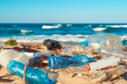 dechets-les-plus-retrouves-sur-les-plages